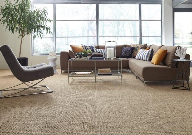 shaw_carpet_StLucia_214__H.jpg