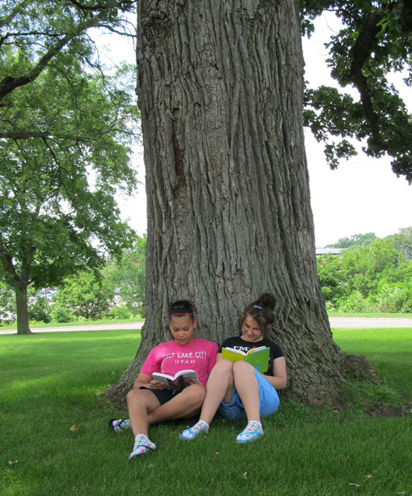 photo of kids by tree