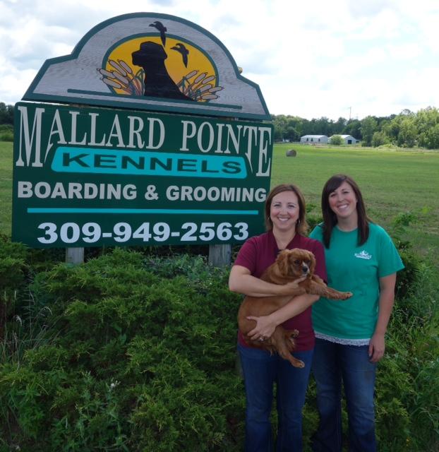 Mallard Pointe photo