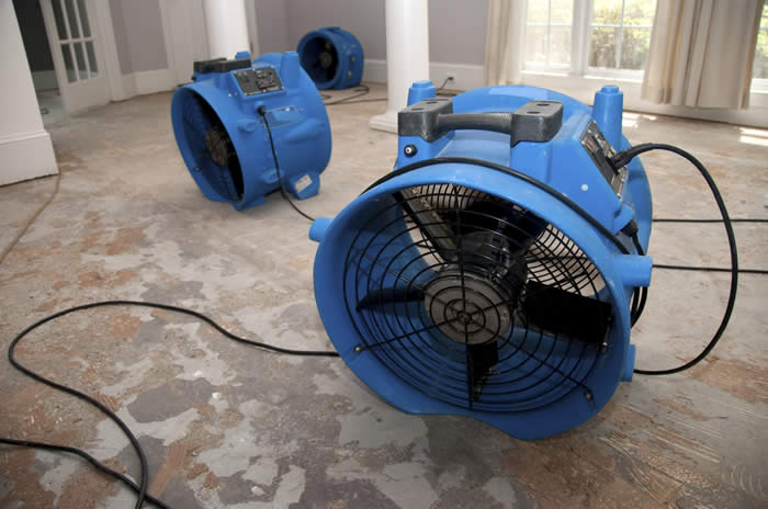 Water Restoration Fans